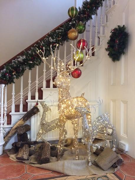 Christmas at Guildford Orthodontics